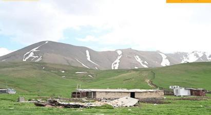 Ադրբեջանական զինված ուժերի ծառայողներն այսօր ցերեկը փորձել են գողանալ Գեղարքունիքի մարզի Վերին Շորժա գյուղի արոտավայրի հովվի շուրջ 20 ձի. ՄԻՊ