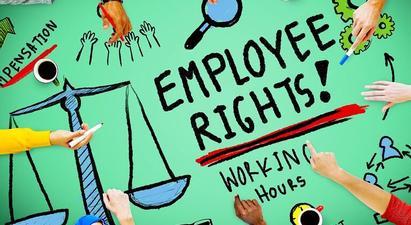 Նախընտրական քարոզչությանը նախորդող ժամանակահատվածի դիտարկման արդյունքներ․ Աշխատանքային իրավունքներին առնչվող խնդիրներ |hcav.am|