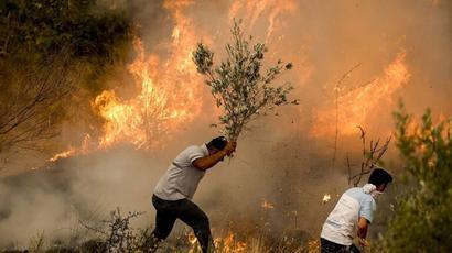 Թուրքիայում անտառային հրդեհներից տուժածների թիվը հասել է 410-ի |tert.am|