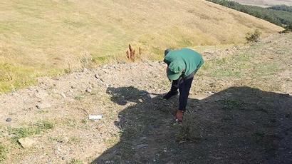 «Արփի լիճ» ազգային պարկի հարակից տարածքը մաքրվել է աղբից