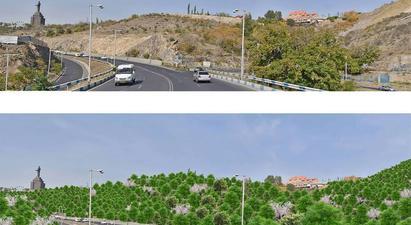 Քաղաքապետարանը կանաչապատելու է Սարալանջի համայնքապատկան հողերը